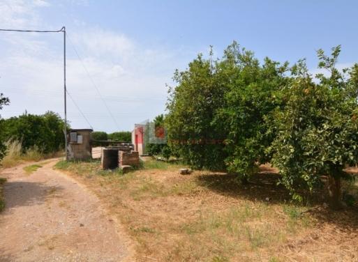 Λάλουκας, Άργος Αγροτεμάχιο 10468 τ.μ.