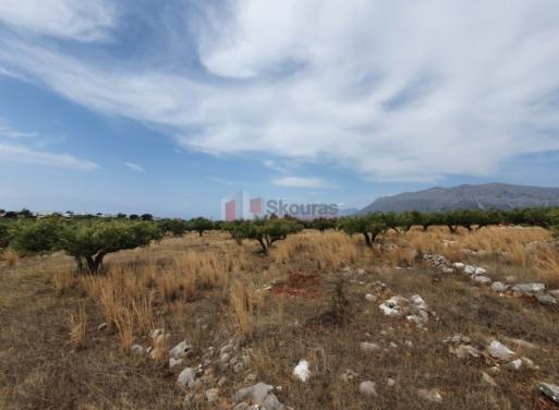Διρός, Οίτυλο Αγροτεμάχιο 4500 τ.μ.