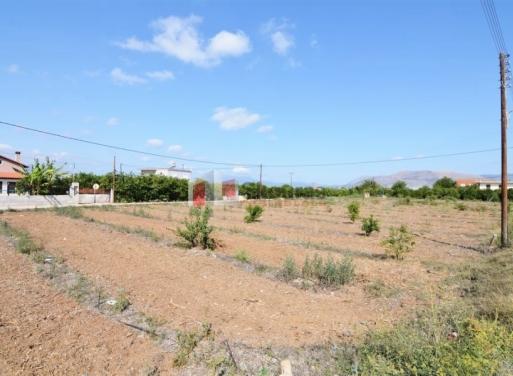 Nea Tiryntha Grundstück 1.277 qm