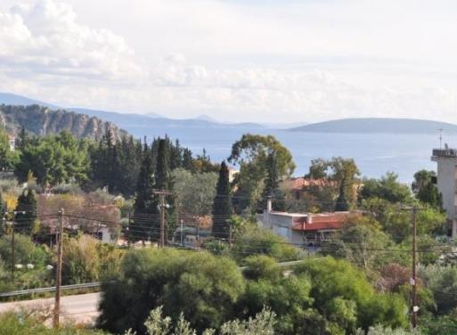 Τολό, Ασίνη Αγροτεμάχιο 7000 τ.μ.
