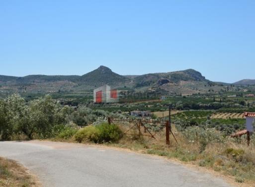 Neo Roeino,  Nea Tiryntha Terrain Agricole 3.069 m2