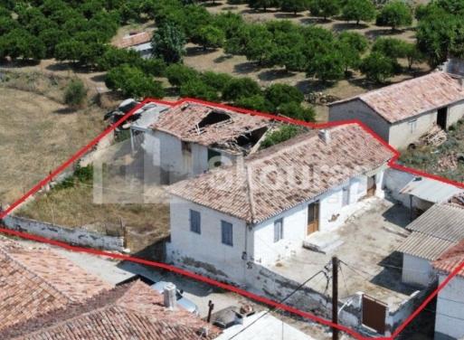Neo Roeino Einfamilienhaus 79 qm
