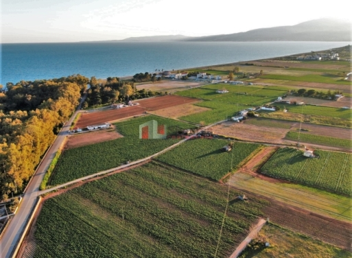 Xinos Grundstück 4.900 qm