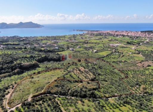 Methoni Agricultural Land  20000 m2