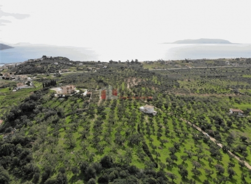 Methoni Agricultural Land  4257 m2