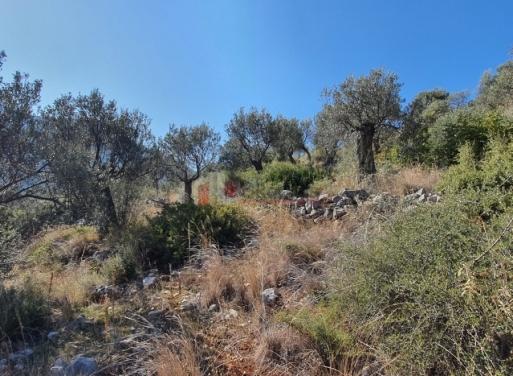 Αρχαία Επίδαυρος, Επίδαυρος Αγροτεμάχιο 3800 τ.μ.