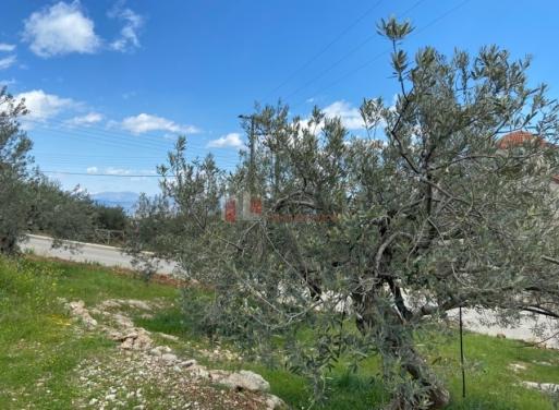 Ξηροπήγαδο, Βόρεια Κυνουρία Οικόπεδο 854 τ.μ.