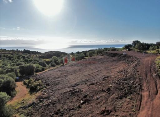 Αίπεια Αγροτεμάχιο 8000 τ.μ.