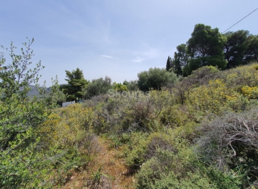 Ναύπλιο Αγροτεμάχιο 440 τ.μ.