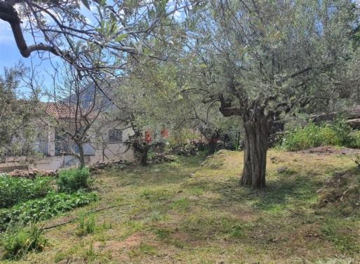 Tyros Einfamilienhaus 103 qm