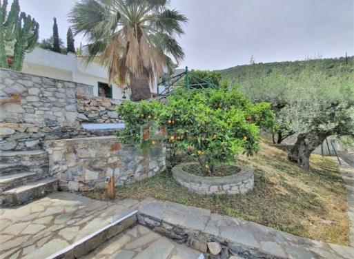 Tyros Einfamilienhaus 160 qm