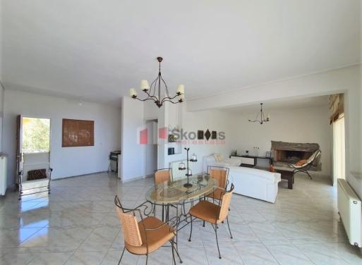 Mikro Amoni Einfamilienhaus 300 qm