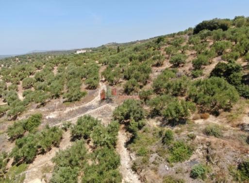Γιάλοβα, Πύλος Μονοκατοικία 400 τ.μ.