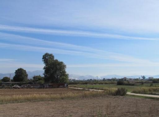 Nea Kios Landparzelle 7.500 qm