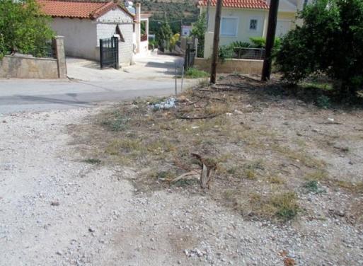 Exostis Grundstück 512 qm
