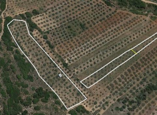 Mykines Landparzelle 10.000 qm