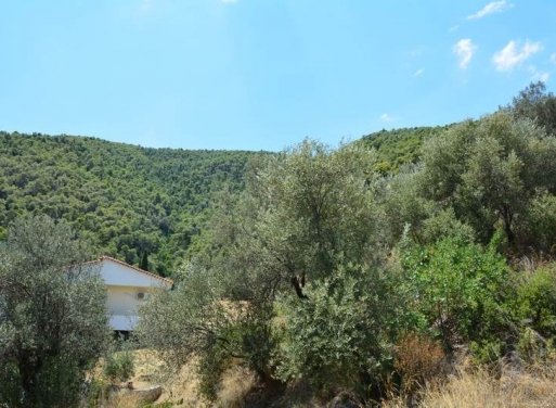 Nea Epidavros Grundstück 2.001 qm