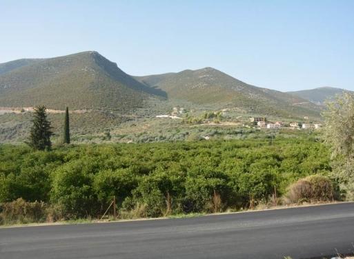 Archaia Epidavros Grundstück 1.900 qm