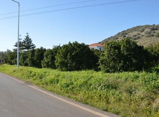 Κιβέρι, Λέρνα Αγροτεμάχιο 3347 τ.μ.