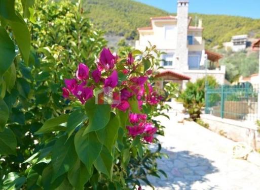 Nea Epidavros Einfamilienhaus 190 qm