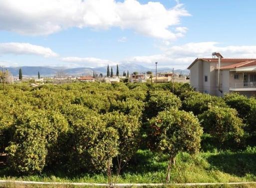 Πυργέλλα, Άργος Οικόπεδο 520 τ.μ.
