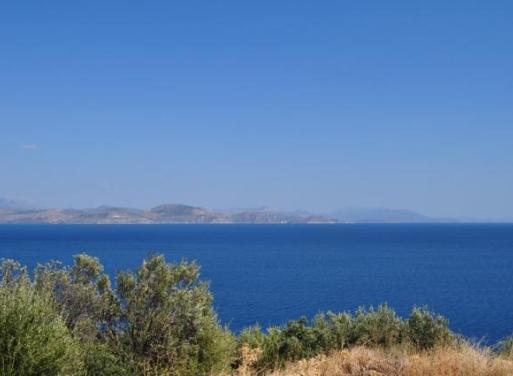 Ξηροπήγαδο, Βόρεια Κυνουρία Αγροτεμάχιο 4000 τ.μ.