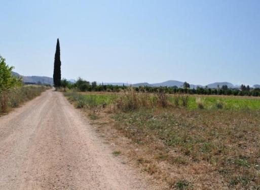 Nea Kios Grundstück 7.200 qm