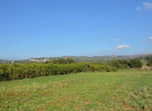 Agios Adrianos Landparzelle 4.770 qm