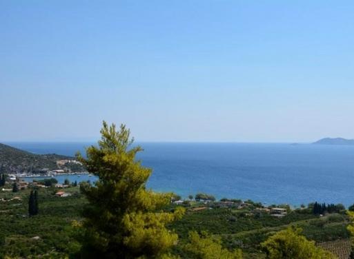 Nea Epidavros Landparzelle 4.000 qm