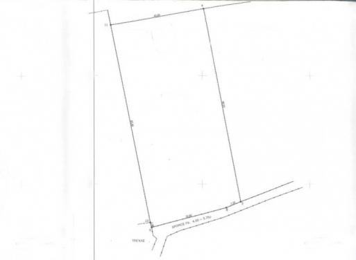 Τίρυνθα, Νέα Τίρυνθα Αγροτεμάχιο 4055 τ.μ.