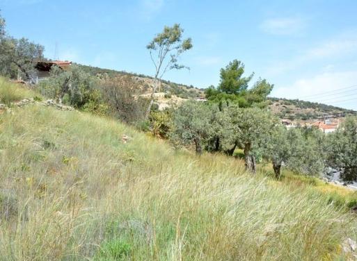 Xiropigado Земельный участок 2.900 кв.м