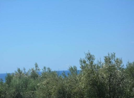 Καρδαμύλη, Λεύκτρο-Καρδαμύλη Αγροτεμάχιο 14000 τ.μ.