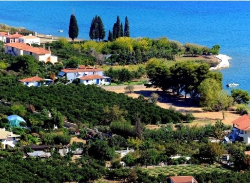 Archaia Epidavros Landparzelle 5.000 qm