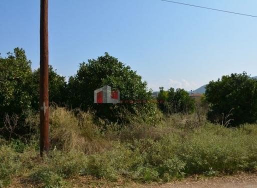 Agia Kiriaki Landparzelle 5.110 qm