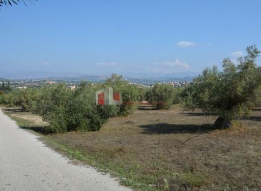 Καραθώνα, Ναύπλιο Αγροτεμάχιο 7410 τ.μ.