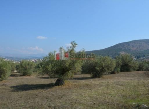 Karathona Landparzelle 7.410 qm