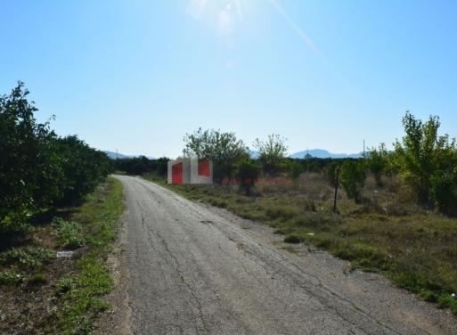 Δαλαμανάρα, Άργος Αγροτεμάχιο 7500 τ.μ.