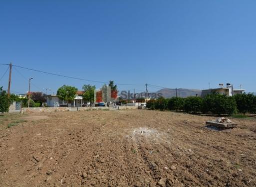 Ira Grundstück 1.260 qm
