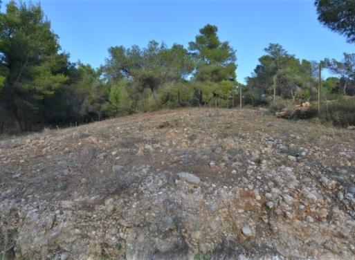 Kosta Grundstück 1.080 qm