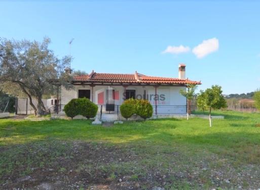 Petrothalassa Einfamilienhaus 88 qm