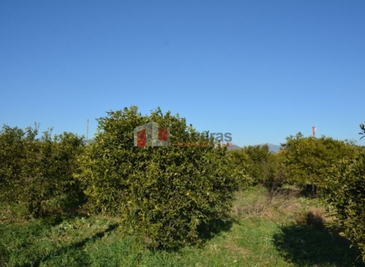 Нэа Киос Земельный участок 7.500 кв.м