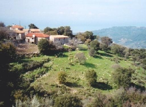 Κυπαρισσία Μονοκατοικία 193 τ.μ.