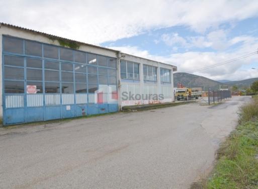 Magoula Промышленное Помещение 1.000 кв.м